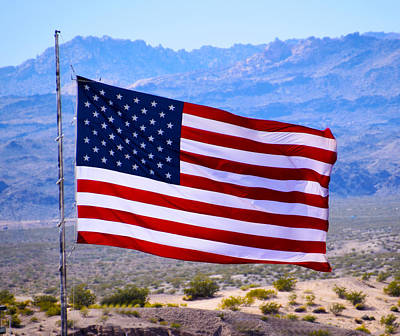 Painting - Desert Patriot American Flag by Barbara Snyder