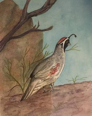 Painting - Desert Quail by Charme Curtin