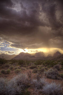 Photograph - Desert Rain by Robert Melvin