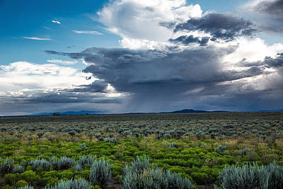 Going Green - Desert Rain - Summer Storm Near Taos New Mexico by Southern Plains Photography