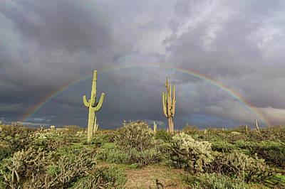Photograph - Desert Rainbow by Ryan Seek
