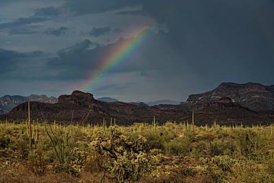Photograph - Desert Rainbow  by Saija Lehtonen