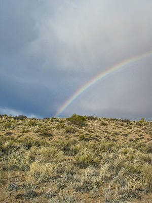 Photograph - Desert Rainbow - Socorro - Nm by Steven Ralser