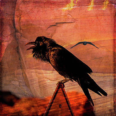 Art Print featuring the photograph Desert Raven by Mary Hone