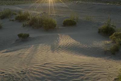 Photograph - Desert Rays by Sara Stevenson