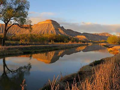 Photograph - Desert Reflection by Karen Shackles