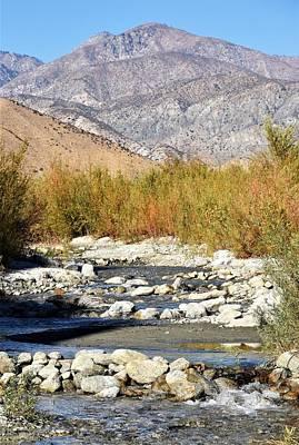 Photograph - Desert River by Lisa Dunn