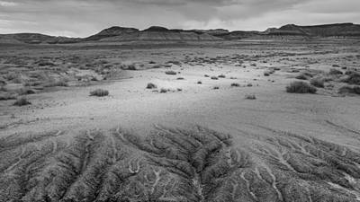 Petrified Forest Arizona Photograph - Desert Rivulets by Joseph Smith