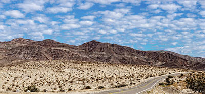 Photograph - Desert Road 3 by Peter Tellone