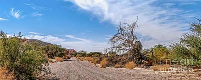 Photograph - Desert Road by Arik Baltinester