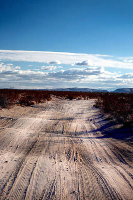 Photograph - Desert Road At Joshua Tree by Lon Casler Bixby