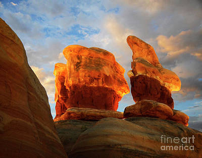 Photograph - Desert Rock Desert Light by Bob Christopher