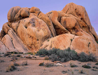 Photograph - Desert Rock Formation by Paul Breitkreuz
