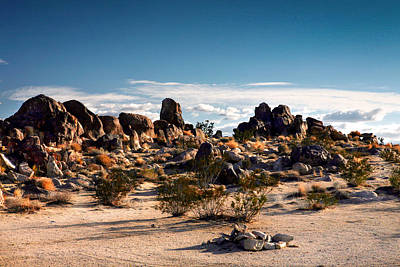 Photograph - Desert Rocks At Joshua Tree by Lon Casler Bixby