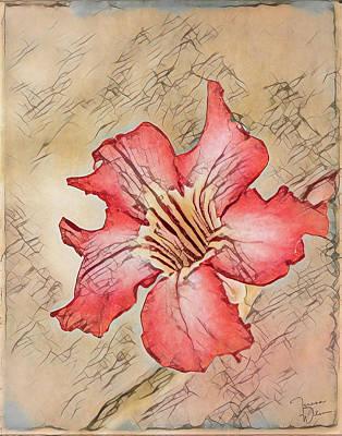 Digital Art - Desert Rose Abstract by Teresa Wilson