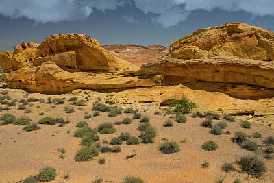 Photograph - Desert Sandstone Cliffs Valley Of Fire by Frank Wilson