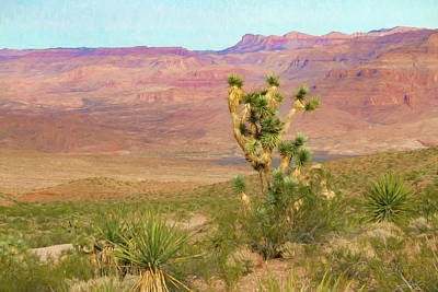 Photograph - Desert Scene Near Grand Canyon West by Bonnie Follett
