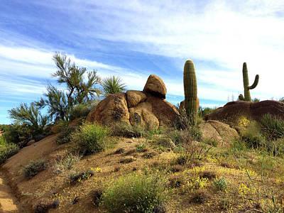 Photograph - Desert Scene Near Sedona Arizona by Barbara Snyder