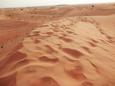 Photograph - Desert Scene by Pema Hou