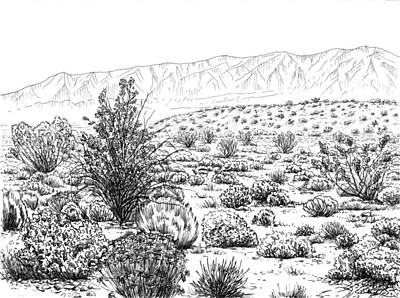 Mountains Drawing - Desert Scrub Ecosystem by Logan Parsons