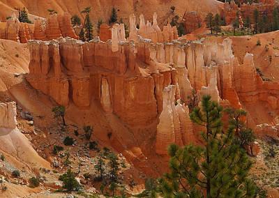Photograph - Desert Sentinels by Broderick Delaney