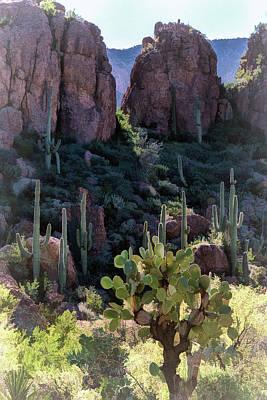 Photograph - Desert Serenity  by Saija Lehtonen