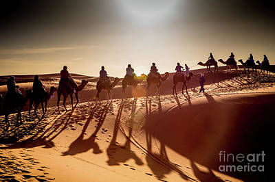 Photograph - Desert Shadow Caravan by Rene Triay Photography