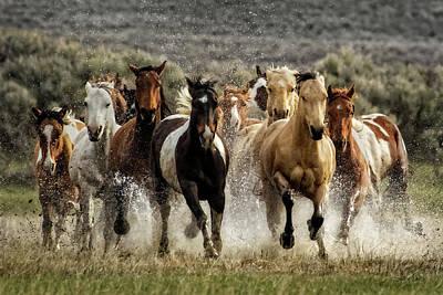 Photograph - Desert Showers by Joan Davis