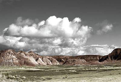 Beaches And Waves Rights Managed Images - Desert Skies #1 Royalty-Free Image by Ralph Muzio