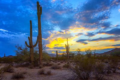Fishhook Photograph - Desert Sky At Sunset - Arizona by Jon Berghoff