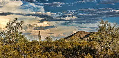 Fishhook Photograph - Desert Sky - San Tan Arizona by Jon Berghoff