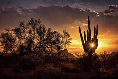 Art Print featuring the photograph Desert Skylight  by Saija Lehtonen