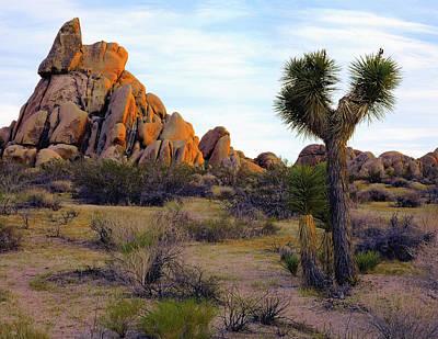 Photograph - Desert Soft Light by Paul Breitkreuz