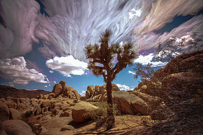 Photograph - Desert Space Time 2 by Ryan Weddle