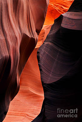 Desert Split Print by Mike  Dawson