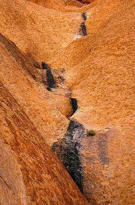 Red Rock Photograph - Desert Stain by Mike  Dawson