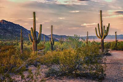 Fishhook Photograph - Desert Sun Setting - San Tan - Arizona by Jon Berghoff