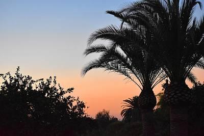 Photograph - Desert Sunrise 1 by Nina Kindred