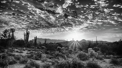 Photograph - Desert Sunrise by Monte Stevens