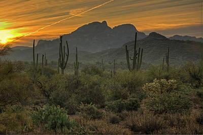 Photograph - Desert Sunrise by Sue Cullumber