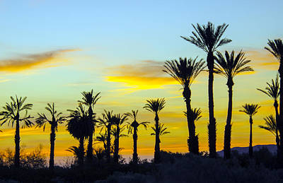 Photograph - Desert Sunrise by William Bitman