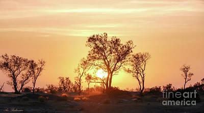 Photograph - Desert Sunset by Arik Baltinester