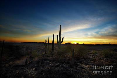 Photograph - Desert Sunset by David Arment
