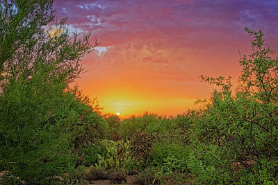 Photograph - Desert Sunset H1832 by Mark Myhaver