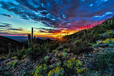 Desert Sunset Hdr 01 Art Print