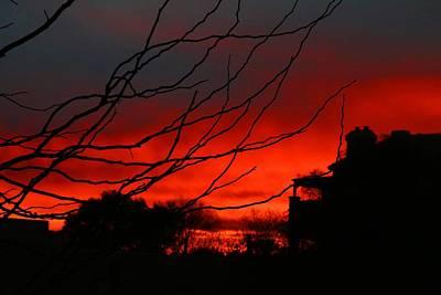 Photograph - Desert Sunset by Kathryn Meyer