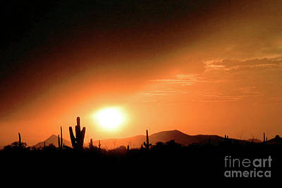 Desert Sunset Art Print by Merton Allen