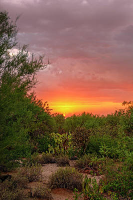 Mark Myhaver Rights Managed Images - Desert Sunset v1836 Royalty-Free Image by Mark Myhaver