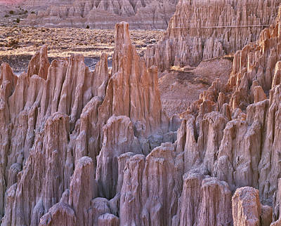 Photograph - Desert Texture by Leland D Howard