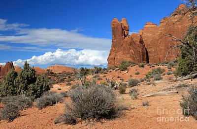 Photograph - Desert Thunderhead II by Mary Haber